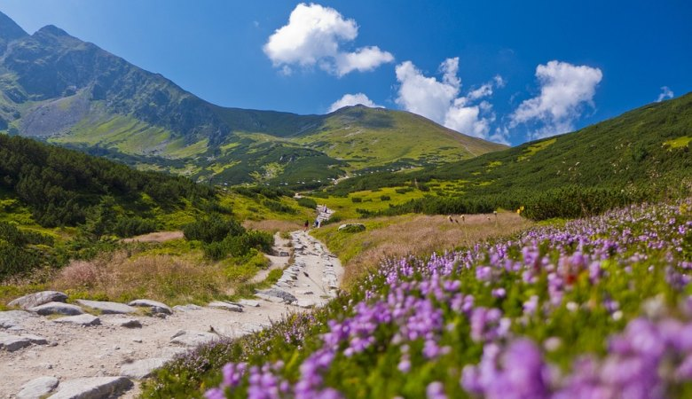 Tatra Hiking <span> with a licensed mountain guide </span> - 3 - Zakopane Tours