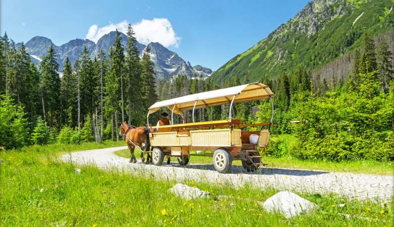 Morskie Oko Lake <span> 1/2 day private sightseeing tour </span> - 2 - Zakopane Tours